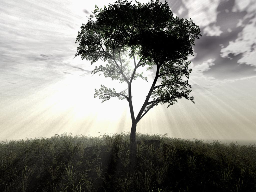 3d_landscape_103