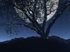 3d_landscape_76